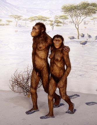 最古老的动物图片