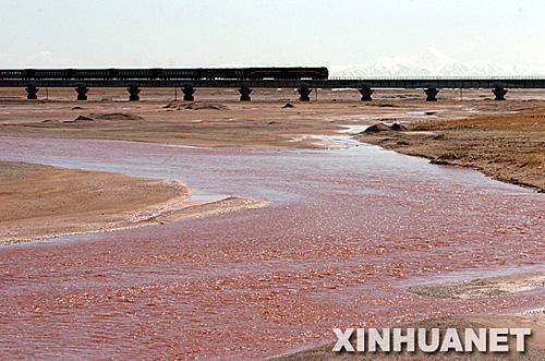 保护了铁路沿线野生动物迁徙条件