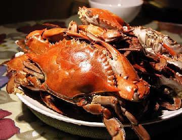 蒸好的螃蟹如何保存_蒸好的螃蟹如何保存-