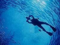 洪都拉斯:最佳潜水胜地