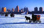 黑龙江哈尔滨市