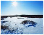 冬至节节气